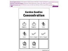 Garden Goodies Concentration Worksheet