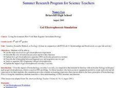 Gel Electrophoresis Simulation Lesson Plan