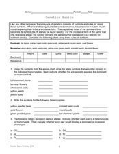 Genetics Basics Worksheet