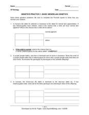 29 Mendelian Genetics Worksheet Answers - Notutahituq ...