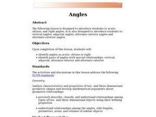 Geometric Angles Lesson Plan