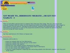 Get Ready to Hibernate! Migrate! or Get Fat! Lesson Plan