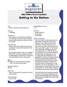 Getting to the Bottom Lesson Plan