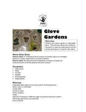 Glove Gardens Lesson Plan