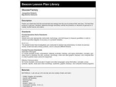 Glucose Factory Lesson Plan