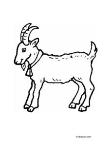 GOAT LINE DRAWING Worksheet