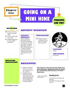 Going On A Mini Hike Lesson Plan