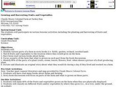 Growing and Harvesting Fruits and Vegetables Lesson Plan