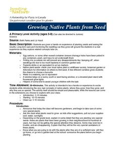 Growing Native Plants From Seed Lesson Plan