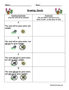 Growing Seeds: Making Predictions Worksheet