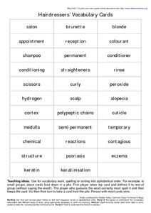 Hairdressers Vocabulary Cards Worksheet