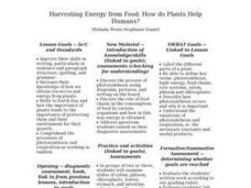 Harvesting Energy from Food: How do Plants Help Humans? Lesson Plan