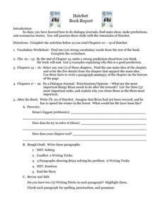 Hatchet book report essay