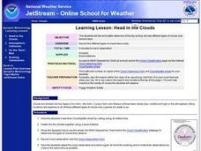 Head in the Clouds Lesson Plan