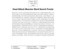 Head & Neck Muscles Word Search Puzzle Worksheet