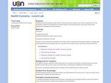 Health Concerns -- Lunch Lab Lesson Plan