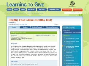 Healthy Food Makes Healthy Body Lesson Plan