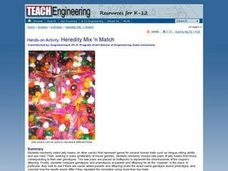 Heredity Mix 'n Match Lesson Plan