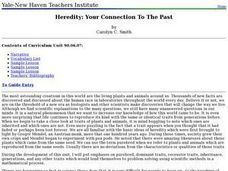 Heredity: Your Connection To The Past Lesson Plan