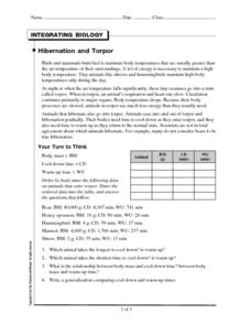 Hibernation and Torpor Worksheet