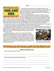 Hide and Seek Worksheet