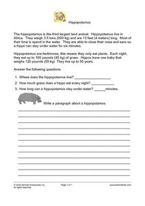 Hippopotamus Worksheet