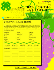 Horticulture and Gardening Worksheet