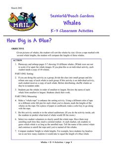 How Big is a Blue? Lesson Plan