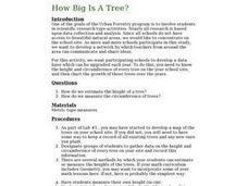 How Big Is A Tree? Lesson Plan