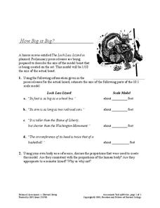 How Big is Big? Worksheet