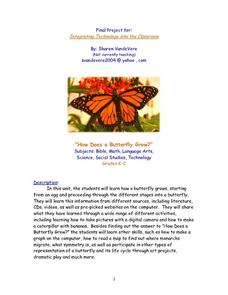 How Does a Butterfly Grow? Lesson Plan