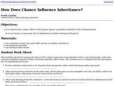 How Does Chance Influence Inheritance? Lesson Plan