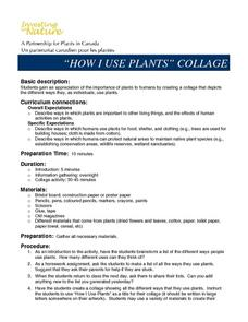 """HOW I USE PLANTS"" COLLAGE Lesson Plan"