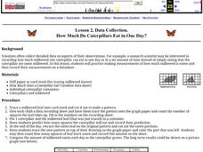 How Much Do Caterpillars Eat in One Day? Lesson Plan