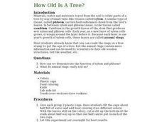 How Old Is A Tree? Lesson Plan