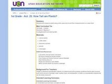 How Tall are Plants? Lesson Plan
