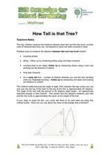 How Tall is that Tree? Lesson Plan