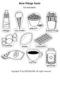 How Things Taste (Pieces) Lesson Plan