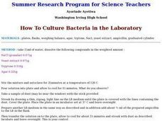 How To Culture Bacteria in the Laboratory Lesson Plan