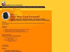How Was Coal Formed? Lesson Plan