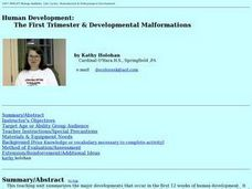 Human Development: The First Trimester & Developmental Malformations Lesson Plan