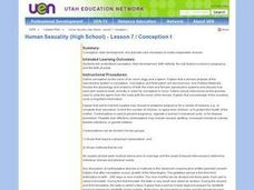 Human Sexuality (High School) - Lesson 7 / Conception Lesson Plan
