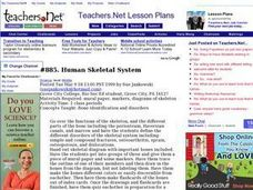 Human Skeletal System Lesson Plan
