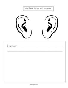I can Hear Things with My Ears Worksheet