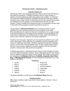 Identifying Insects Lesson Plan