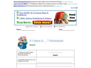 If I Was A Insect? Worksheet Worksheet