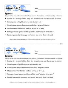 Iguana Worksheet