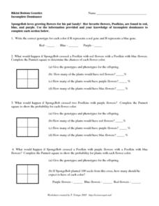 incomplete dominance and codominance worksheet | Adcontessa