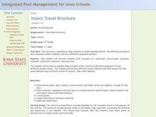 Insect Travel Brochure Lesson Plan