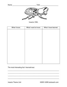 Insects: KWL Worksheet
